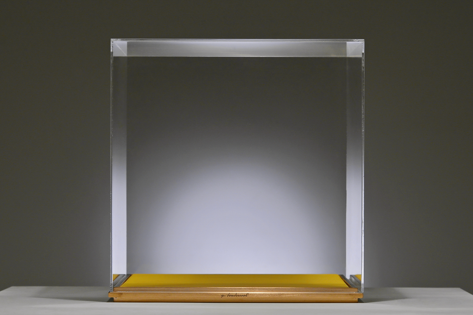 PTendercool-Display Vase-BS1-Yellow-190212-01