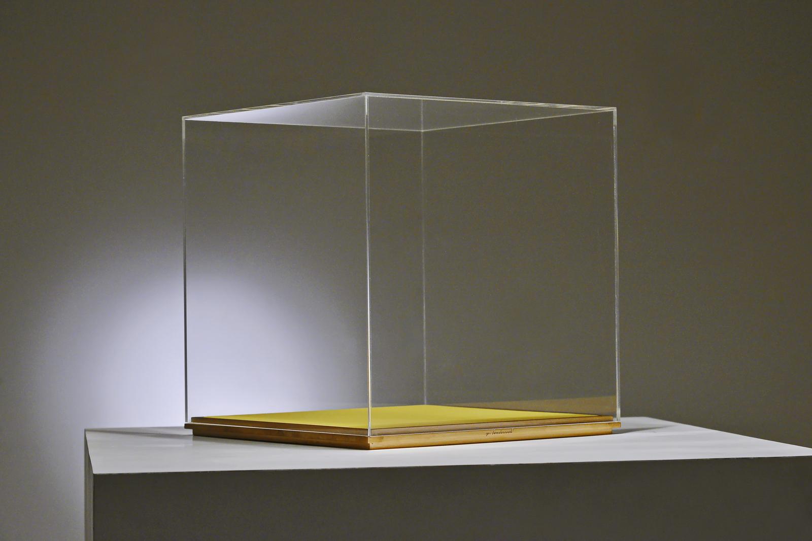 PTendercool-Display Vase-BS1-Yellow-190212-04